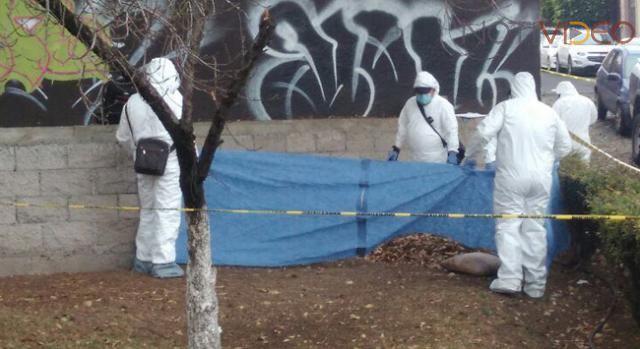 Encuentran restos de un feto humano en centro de Morelia