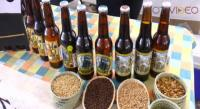 Morelia celebra su fiesta cervecera internacional